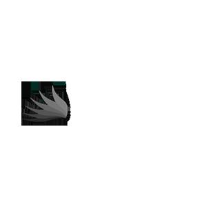 CTP-Website_PR-Page_Client-Logos_300x300_v1-AthenaHealthcareSystems